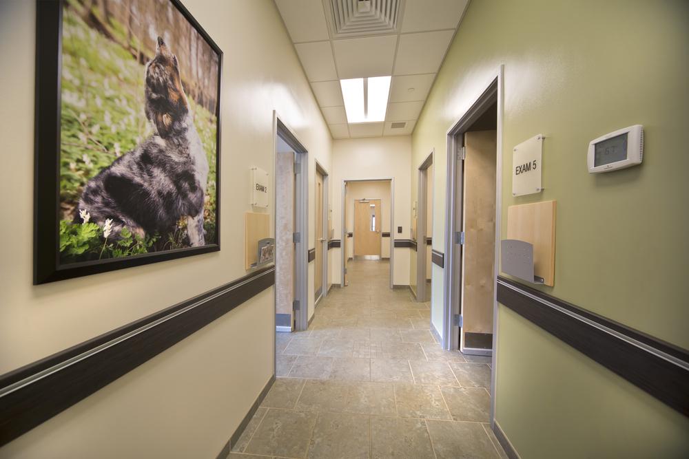 Wood_FOH Hallway.jpg