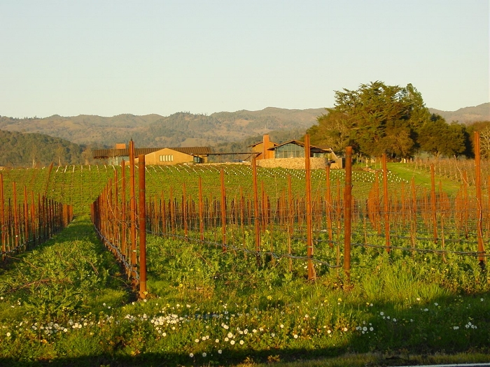 napa-valley-sunset-1542623.jpg