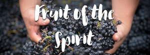 Fruit of the Spirit  - A look at the 9 characteristics in Galatians 5.