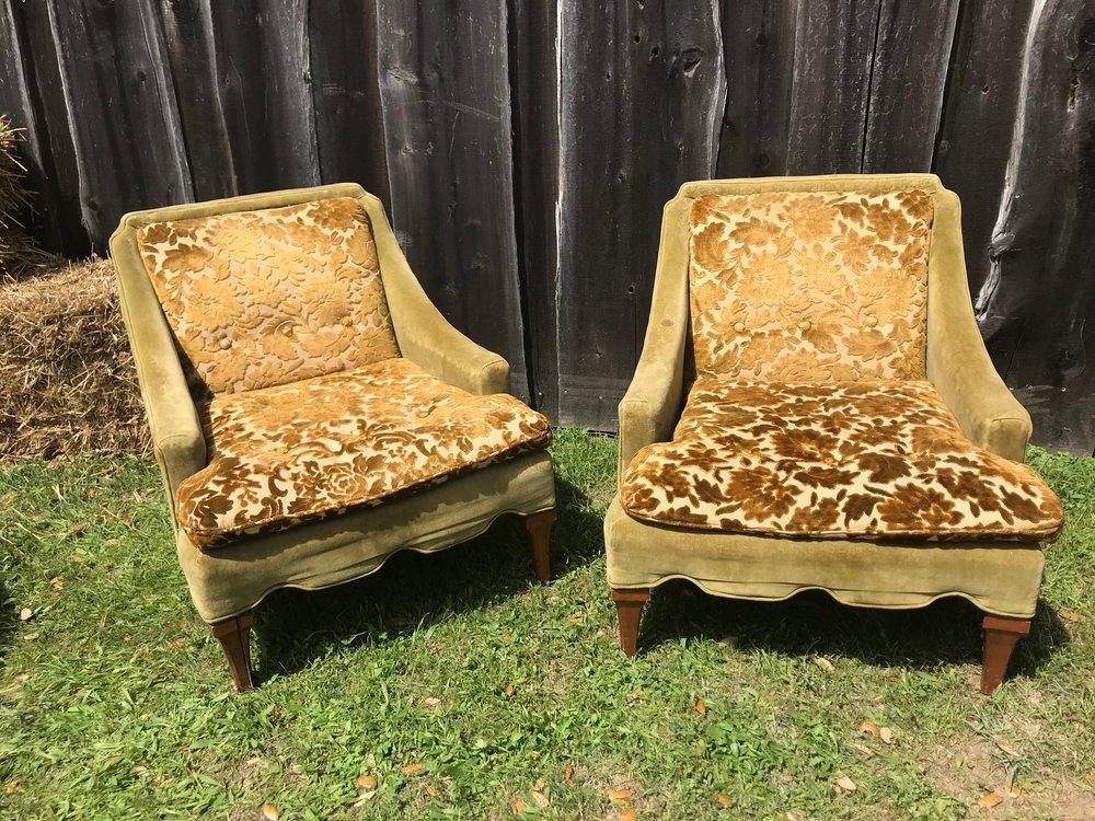 Beezus Chairs