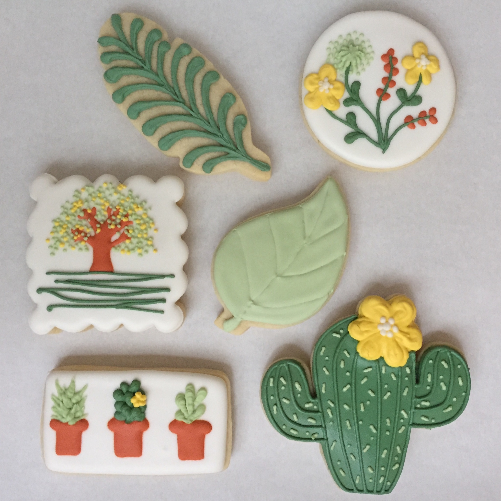 Succulents Cookie Decorating Class M6 Winery