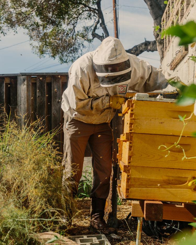 Ryan-ODell-Beekeeping-32.jpg
