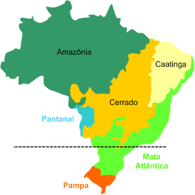 Biomes of Brazil.  (Image by Brazil Travel - http://www.braziltourstravel.com/biomes.png, CC BY-SA 4.0,  https://commons.wikimedia.org/w/index.php?curid=53887697  )