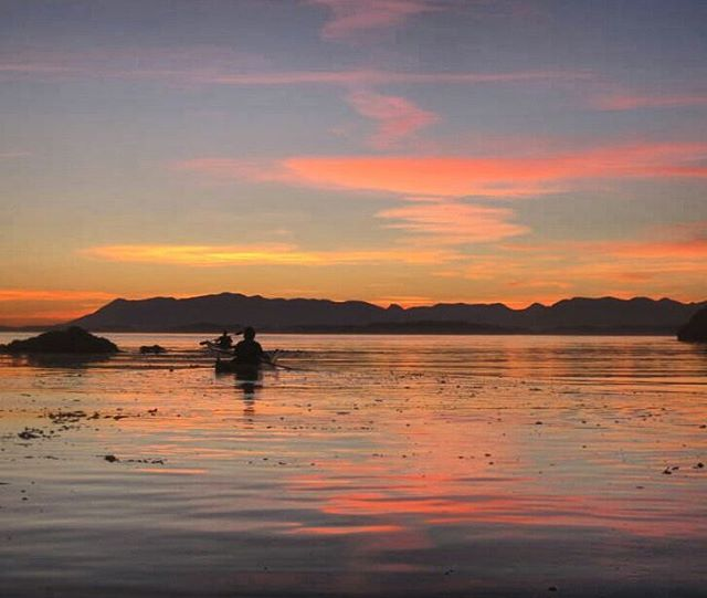 Enjoy time spent on the water? Love our beautiful BC Coastline? Can't seem to sit still? Check out @bluedogkayaking and their amazing kayaking tours to make your dreams a reality! With locations in Mills Bay & Port Sidney, Blue Dog makes it easy for you to make the switch from city life to island time. Check em out! http://ow.ly/Jwch309fZiS #vanislandvacation #vancitybuzz #Victoria #millbay #sidney #watersports #kayaking #adventure #exploreBC #destinationbc #vancouverisland