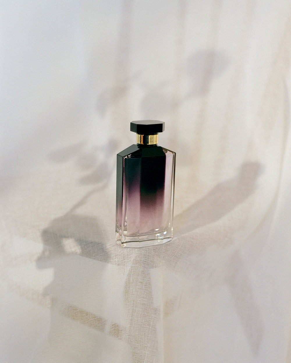 STELLA EAU DE PARFUM  - STELLA MCCARTNEY - LONDON, MARCH 2017