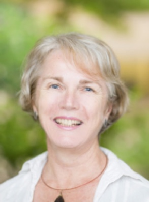 <p><b>Prof. Ann Roberts</b><br>Physics<br>University of Melbourne</p>