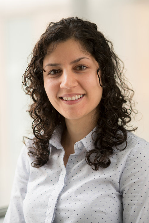 <p><b>Dr Pegah Maasoumi</b><br>ARC Research Fellow in Flexible Electronics<br>University of Melbourne</p>