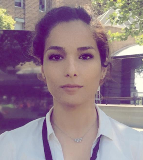 Parisa Hosseinabadi, PhD Student, University of New South Wales