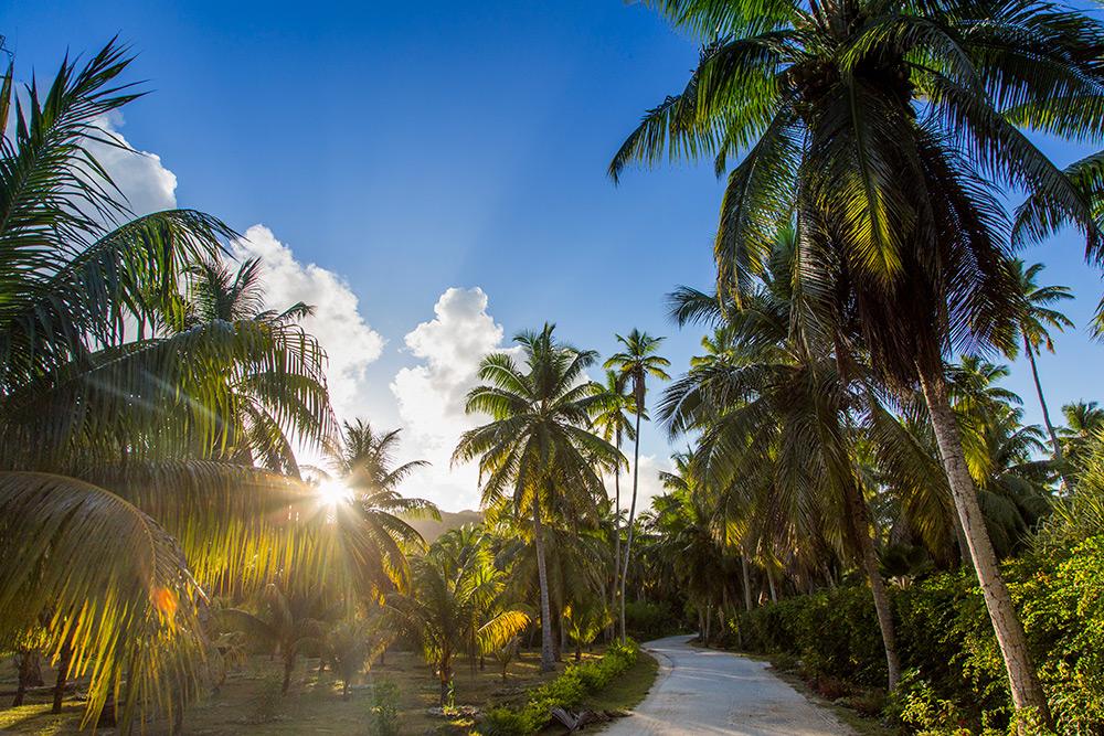 SourceDargent_LaDique_Seychelles_106.jpg