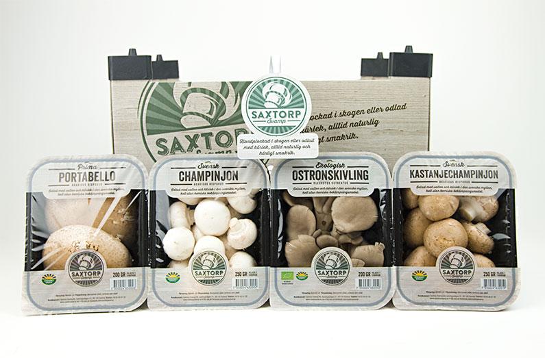 Grafisk profil och förpackningsdesign åt Saxtorp Svamp, en ekologisk svampodlare i den skånska myllan