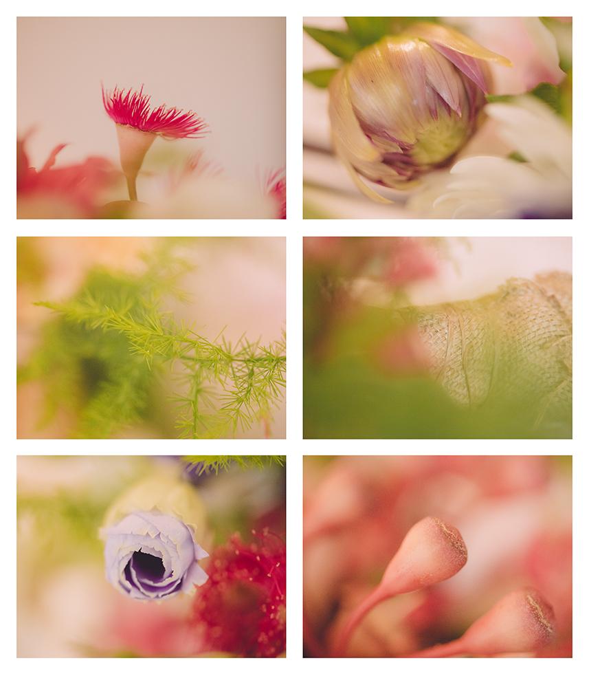 004Wedding BrioneyLoic Popcorn Photography Aust