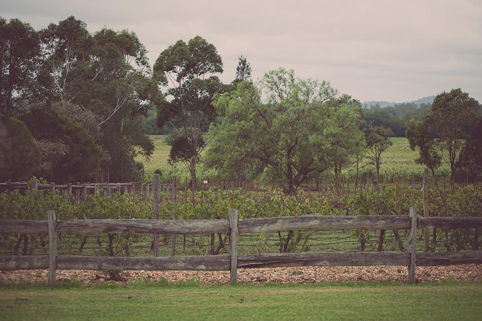017Wedding BrioneyLoic Popcorn Photography Aust