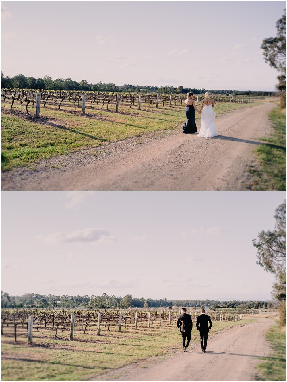 Leogate Estate Wines Wedding + Pokolbin Wedding Photographer + Louise and Daniel_0033.jpg