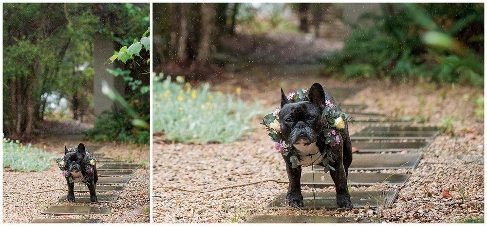MARGAN Wedding Photographer_0012.jpg