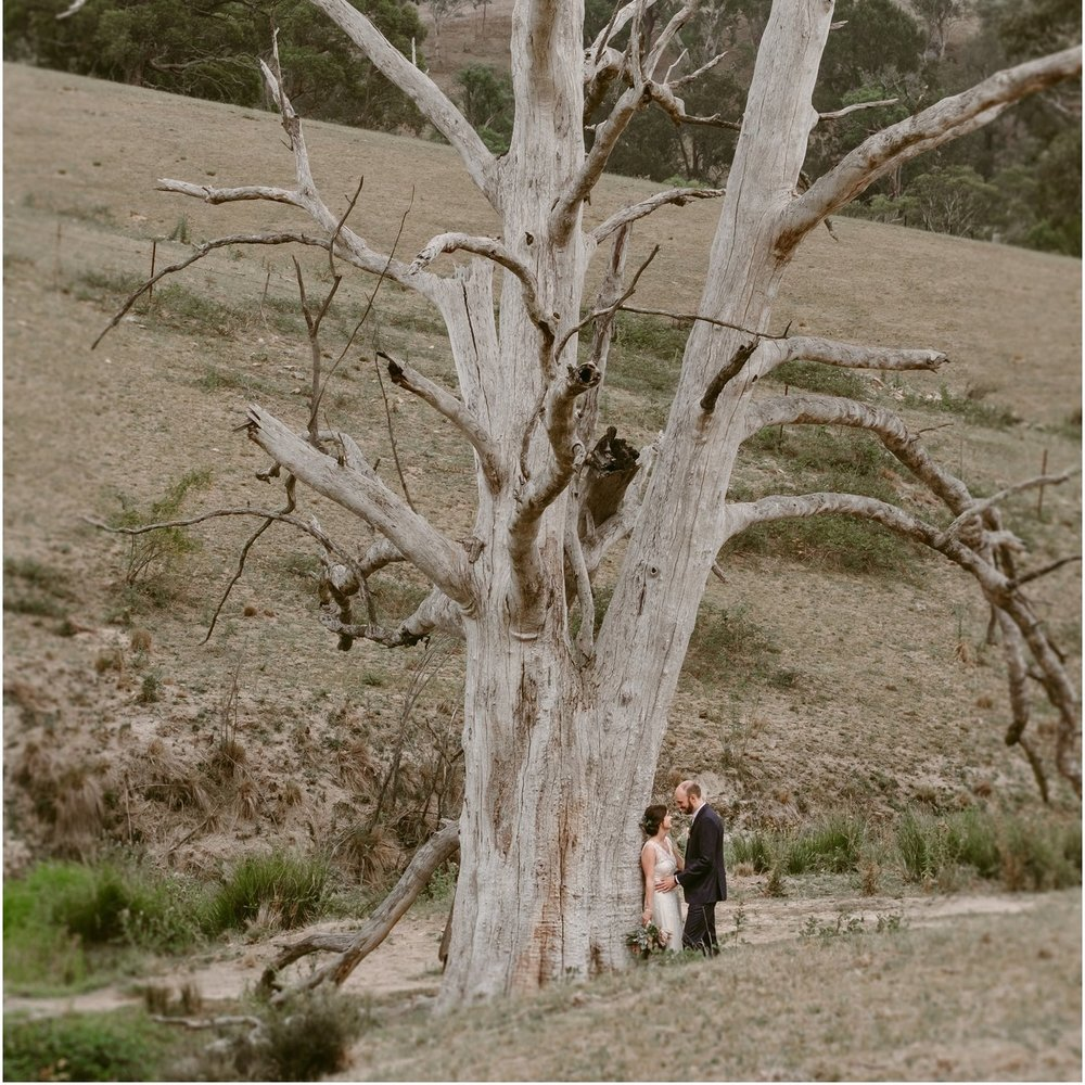 EMILY + ADAM - DRYRIDGE ESTATE BLUE MOUNTAINS