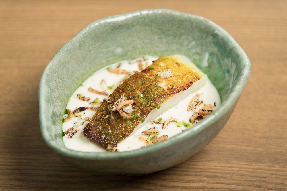 Thai cod curry, kaffir lime 2.jpg