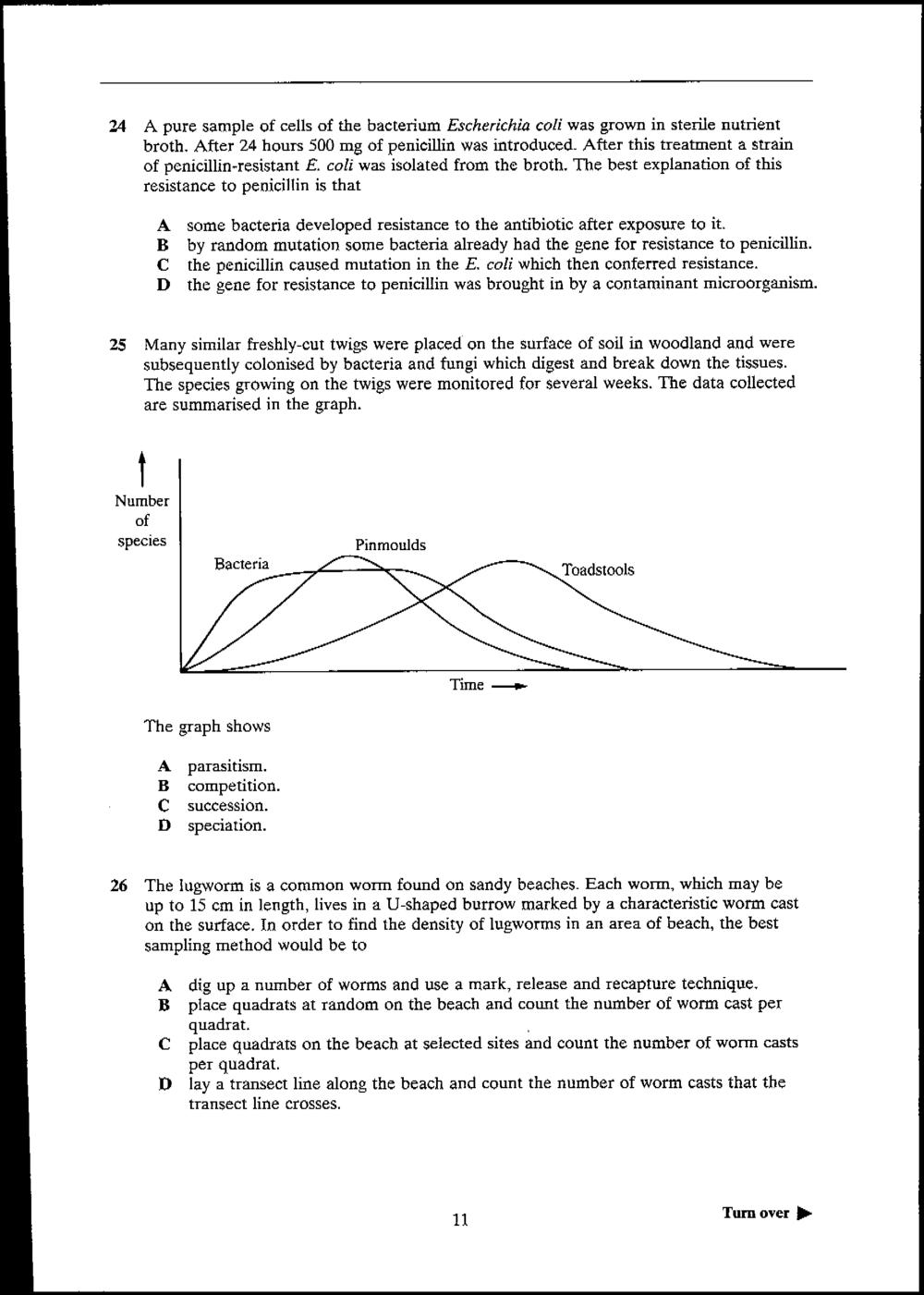 Civil engineer cover letter.doc