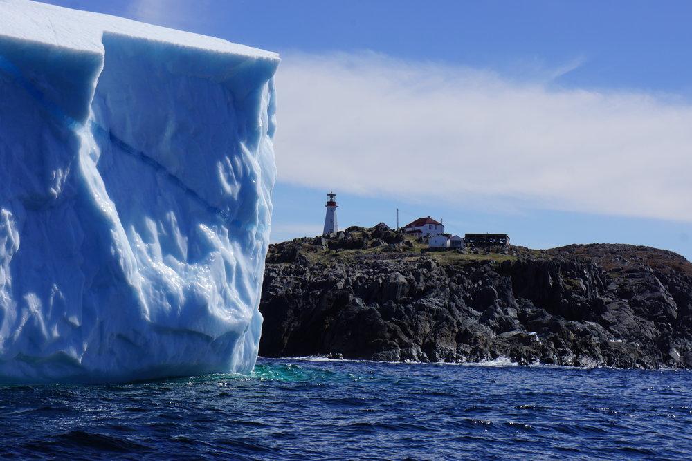 Iceberg at Quirpon.JPG