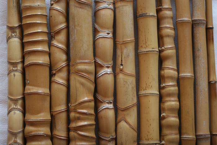 Bambu Montagem-9491.jpg