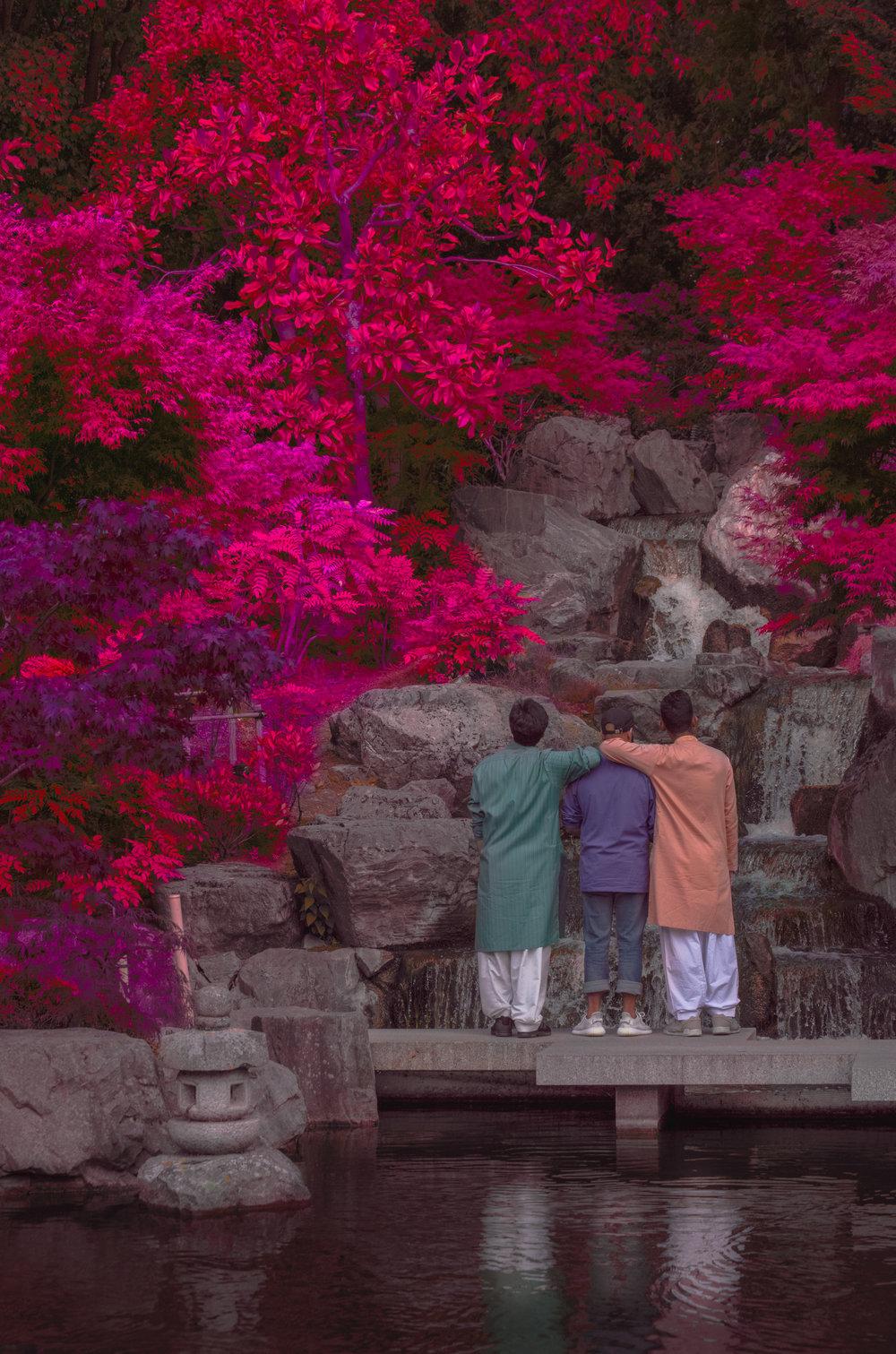 kyoto gardens red leaves 1.jpg