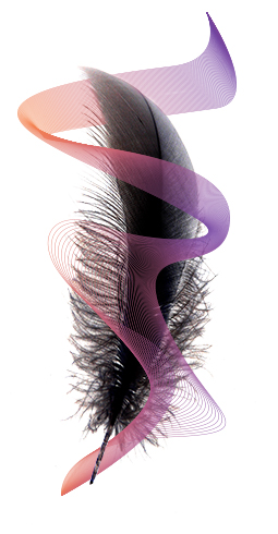 Feather with swirl.jpg
