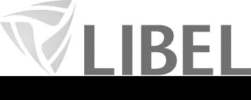 libel2.png