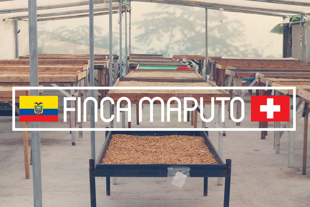 Finca Maputo, the Gaibor's original farm; Image Credit: Cafe Imports