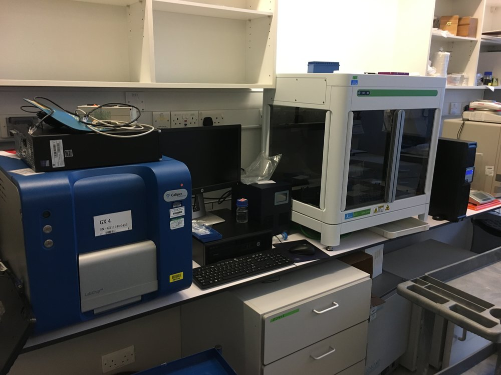 CALIPER GX AND ZEPHYR G3 NGS WORKSTATION #2 for post-pcr single cell work