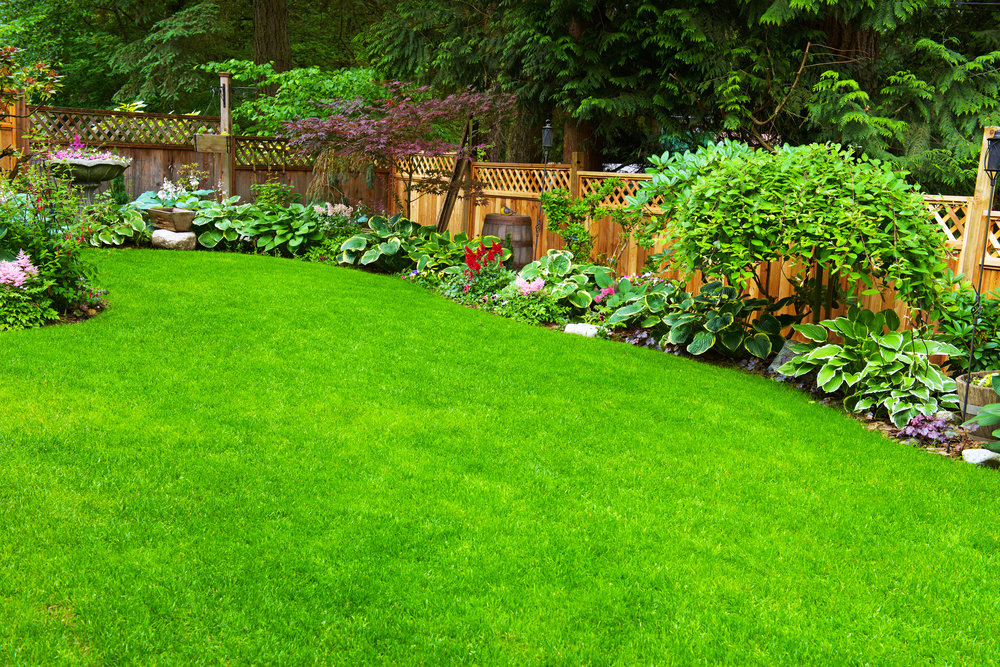5 Innovative Fence Line Landscaping Ideas for Your Glen Cove, NY, Home