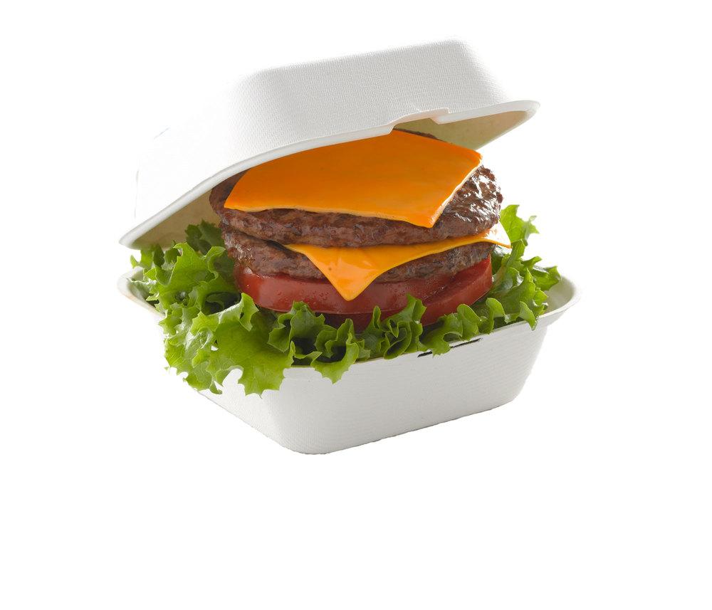 Cheeseburger00000.jpg