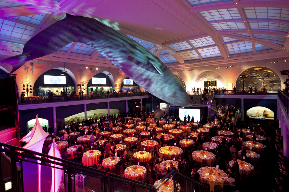 ceci-new-york-gives-back-boys-and-girls-club-of-america-great-futures-gala-2011-invitations-party-decor-museum-of-natural-history-event--5.jpg