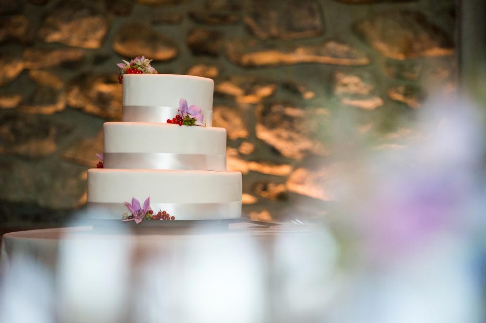 Ceci_New_York_Bride_Wedding_Blue_Hill_38.jpg