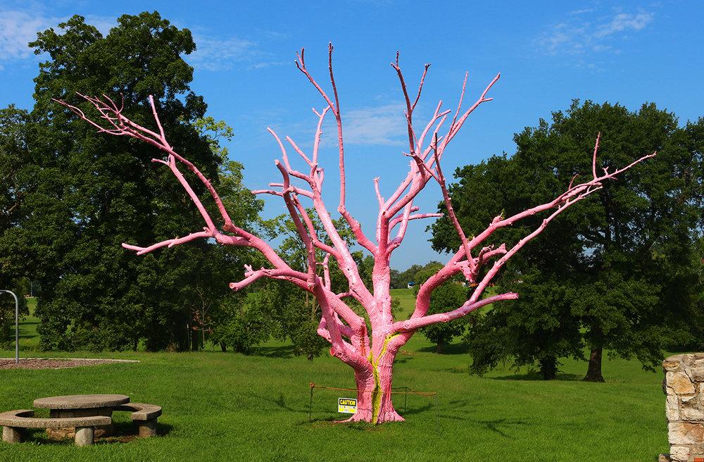 Tree, Broken Tree