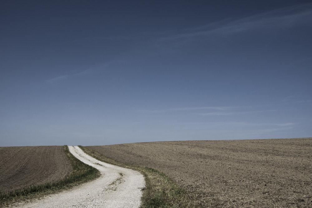 nature-sky-field-path.jpg