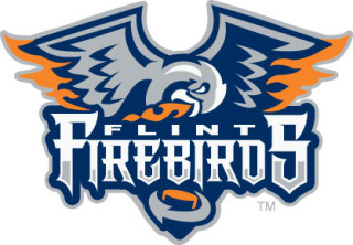 Flint Firebirds logo.jpg