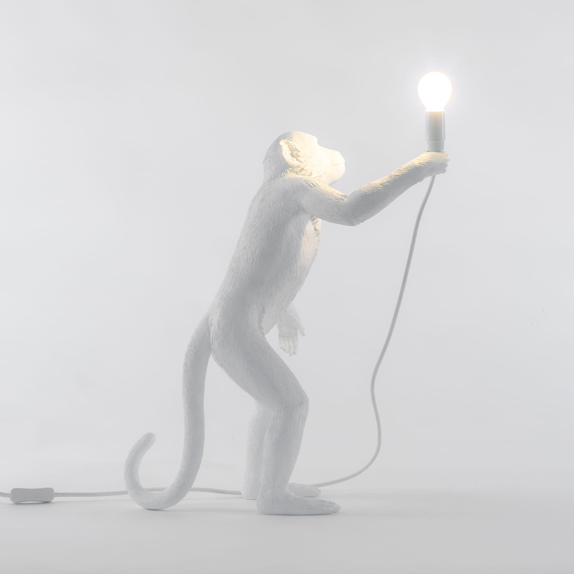 lighting trio tag lab mg lamp anatomy light design copy