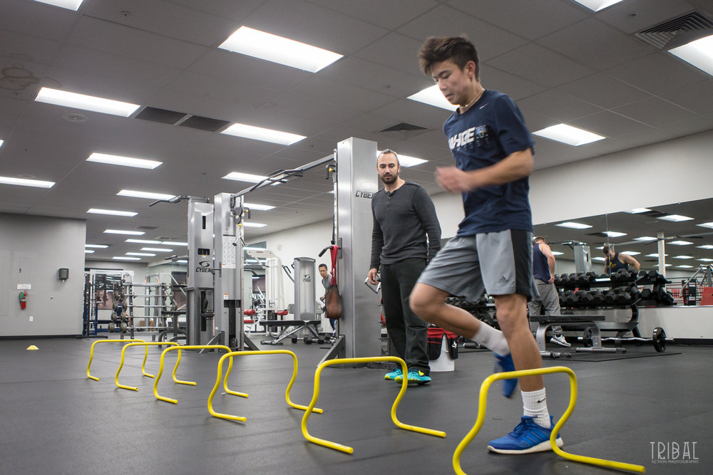Student Athlete Training - Speed, Strength, agility, mobility and quickness. Private and small group programs available.