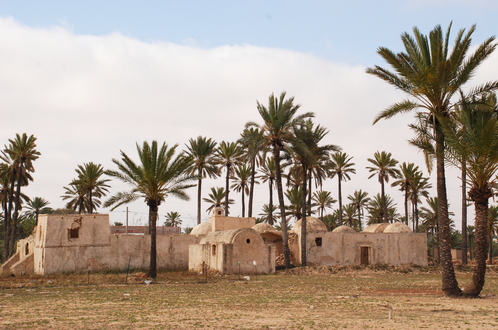 Farm- Djerba, Tunisia