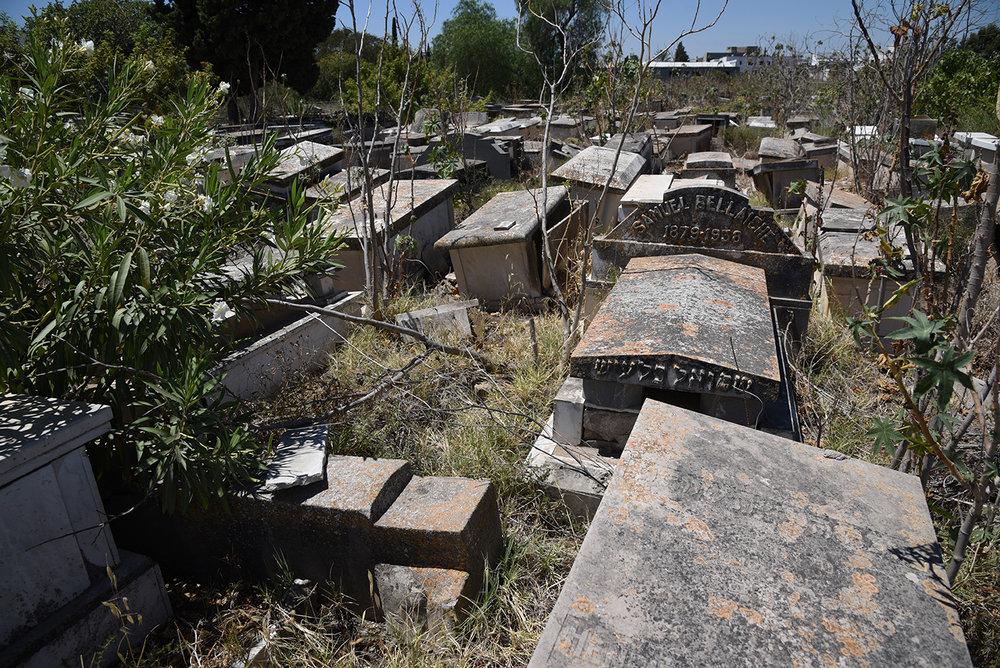 Le Borgel cemetery. Tunis, Tunisia