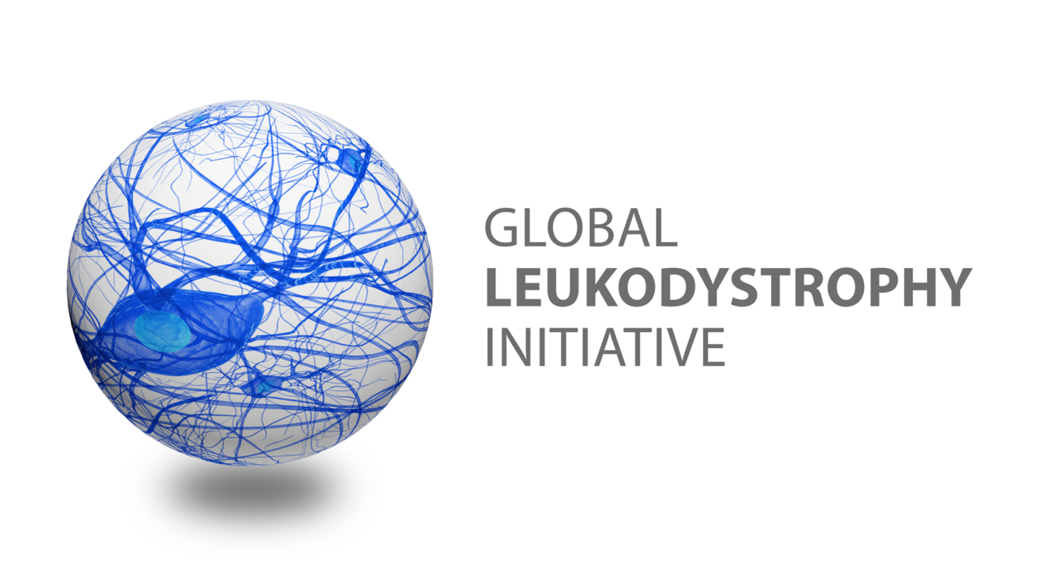 The Global Leukodystrophy Initiative
