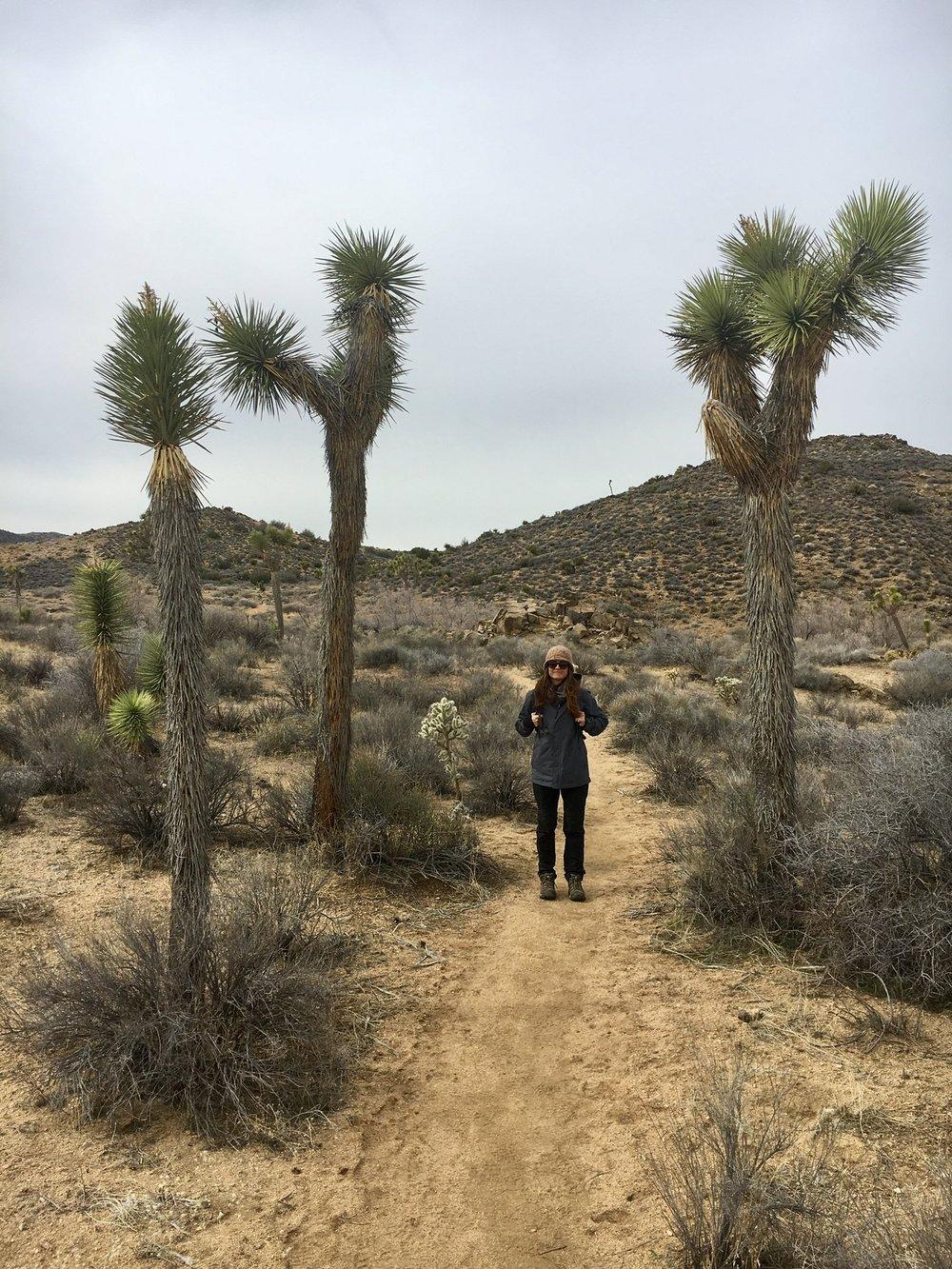 Cynthia hiking in the backcountry in Joshua Tree.