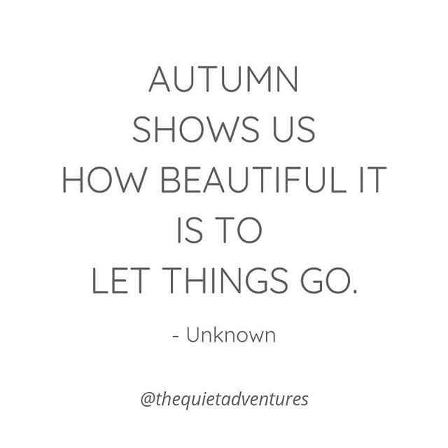 "Years ago, a friend sent me a card with this quote, ""Autumn shows us how beautiful it is to let things go."" ""Beautiful?"" I thought, ""Letting go feels the opposite to me: painful, uncomfortable, and messy."" But the card was right. I'm awestruck when I witness the leaves changing and watch the trees let go of their beautiful leaves every year.  Why is it beautiful and inspiring when Mother Nature let things go, yet in my own life it was something to be dreaded?  So I started to follow that awestruck feeling and found a tree to watch throughout fall to see what I could learn from her.  I watched this tree as I worked through letting go of a relationship that was no longer serving me. It was challenging, but here are 3 things I noticed that really helped me:  1.) The leaves don't change colors and fall to the ground in one fell swoop... letting things go takes time.  2.) The tree doesn't yell in outrage when bitter winter winds arrive early and shake away her leaves, she just accepts her surrounding and her situation for what they are.  3.) The tree doesn't freak out because all of her leaves are falling or the earth beneath is dying and turning brown. In fact, the tree stands a little taller as it moves through this process. She's lighter without all of those leaves weighing her down.  Seeing and understanding these things helped me to feel safe enough to let things fall away in my own life. From releasing what no longer served me to letting go of people and things, I slowly learned how to let go. Breathing deeply, step by step, the forest showed me the way.  It was scary and at the same time very liberating. This freedom helped me to remember that I am a natural being who is connected to Mother Nature and just like her, I too have cycles.  Do you ever look to nature to show you the way when things feel challenging for you? Feel free to share below if you feel called... I'd love to hear your stories."