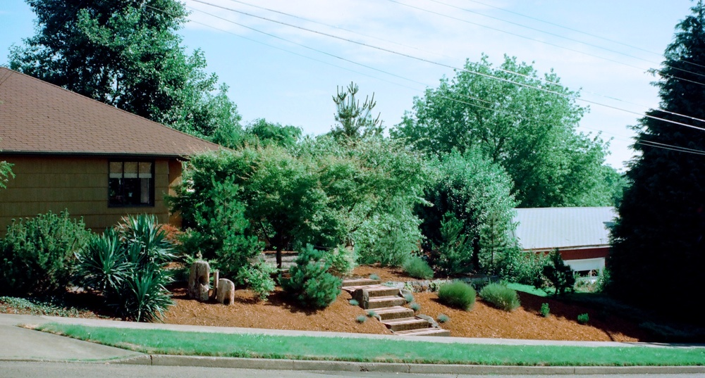 Not long after that hot day (pictured above), Bill made the front of our home welcoming. Most of the plant materials in this image are no longer there (see next image). In particular, note large cedars at right, removed by Rich Holmes.