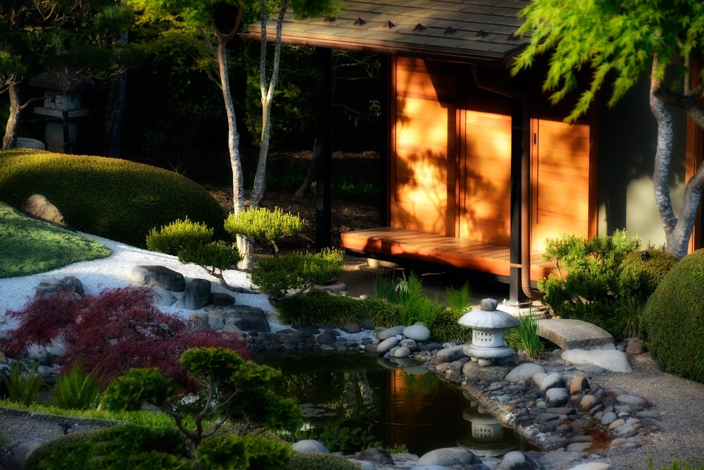 Tea house with pine shadows
