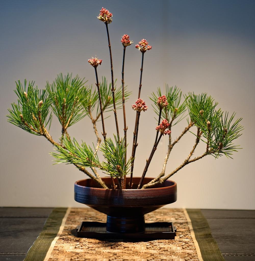 Ikebana...