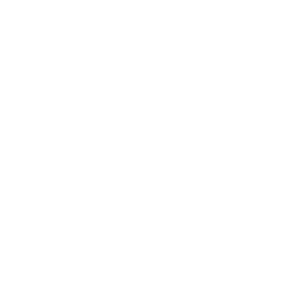VIIVIO Secondary Logo