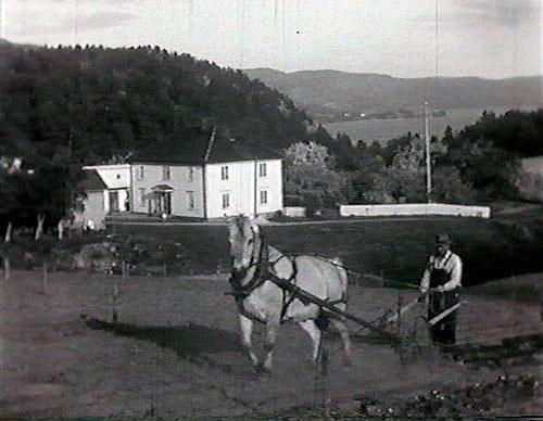 Lange arbeidsdager. 1953