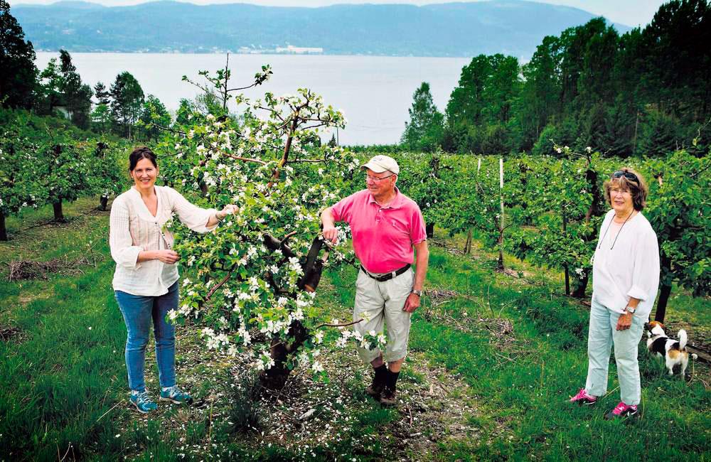 To generasjoner eplebønder på Hyggen gård; Olaf og Eva Hyggen og Merete Hyggen.