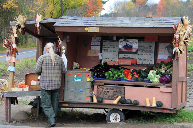Marilyn-London-Ewing---farmstands_-5