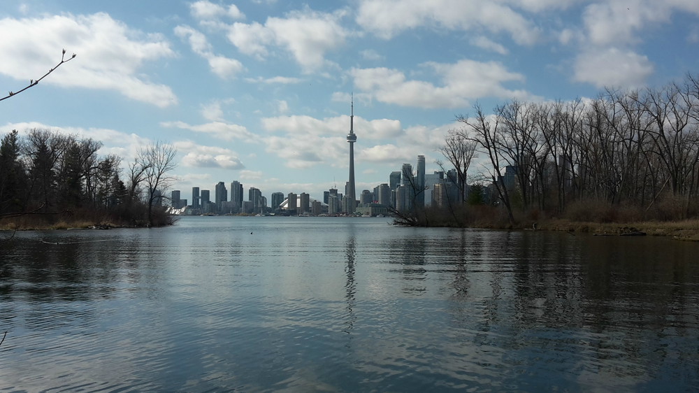 View of Toronto city skyline